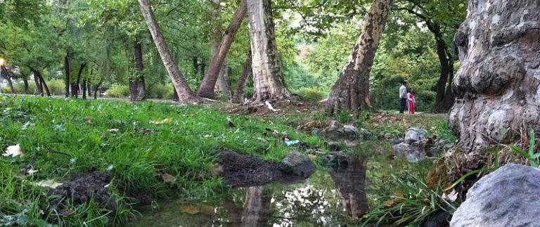800px-topciderski_park-raj_u_beogradu_topcider_park-belgrade_paradise-768x574