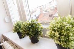 apartman-cityzen-apartmani-beograd-20