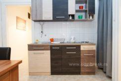 apartman-muzej-apartmani-beograd-32