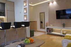 apartman-u-beogradu-banjska-01