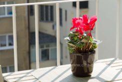 apartman-u-beogradu-centar-dobracina-ulica-21